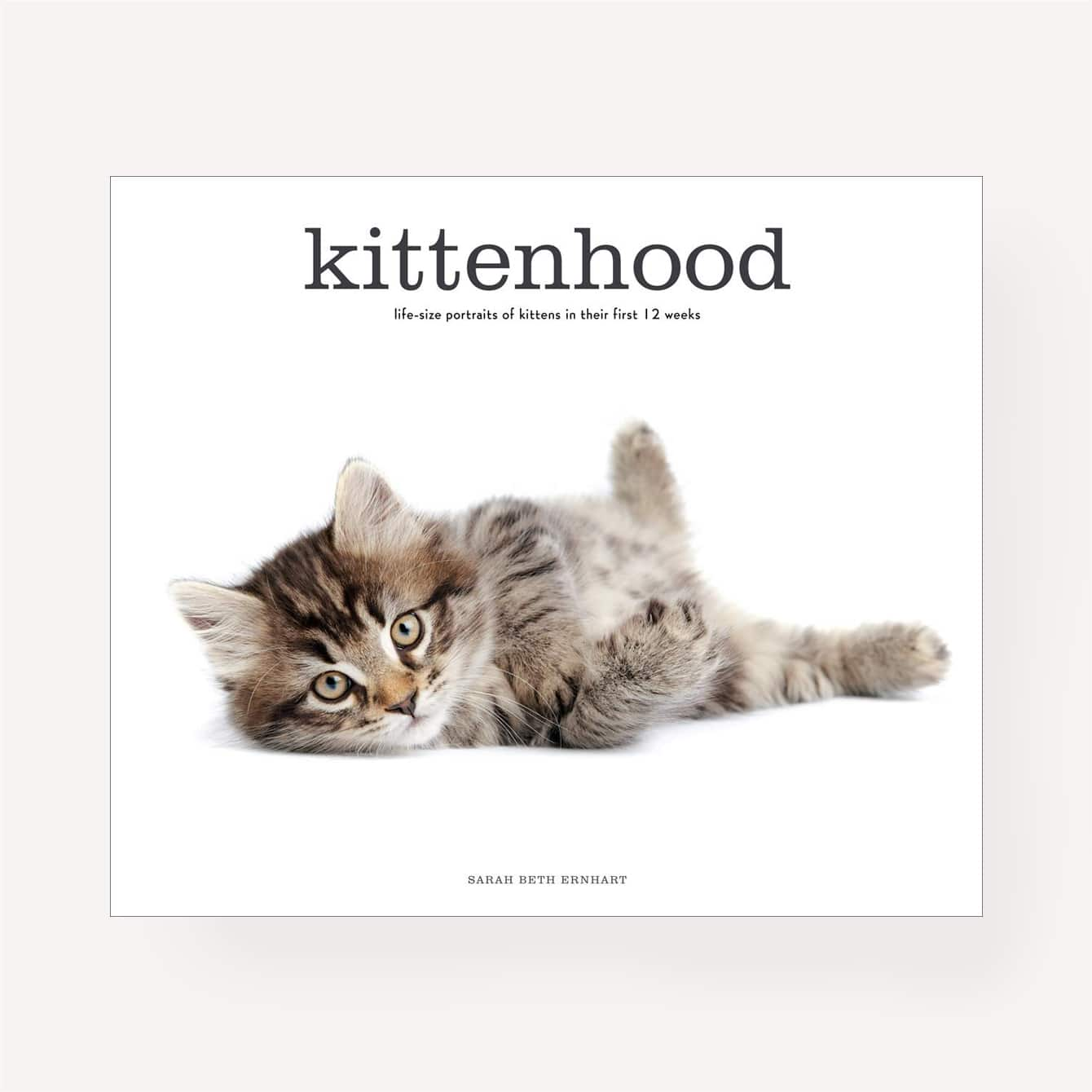 Kittenhood: Life-Size Portraits of Kittens