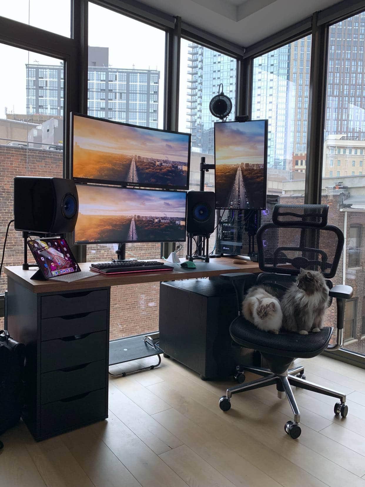 Brooklyn High Rise With Big Monitors